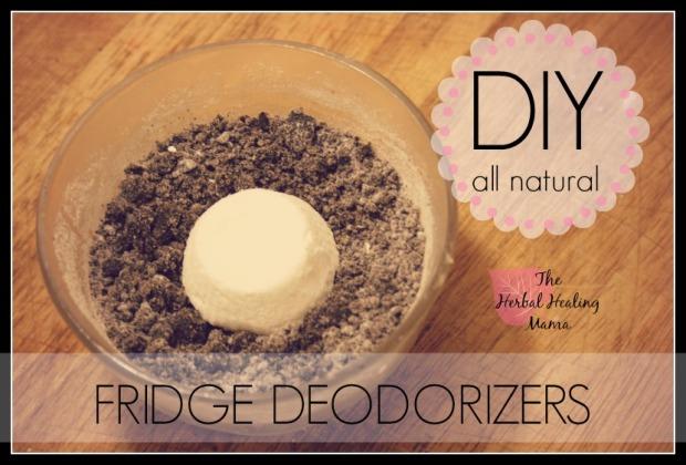 Fridge Deodorizers DIY