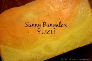 Yuzu Closeup