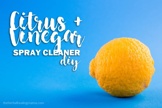 Citrus & Vinegar Spray Cleaner DIY all natural