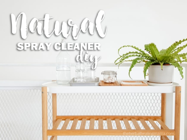 Natural Spray Cleaner DIY