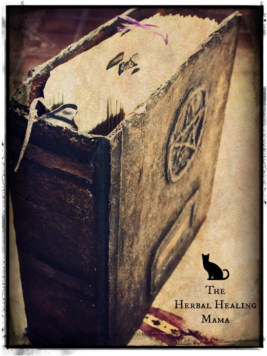 diy book of shadows the herbal healing mama