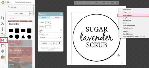 Create Labels on Picmonkey 9