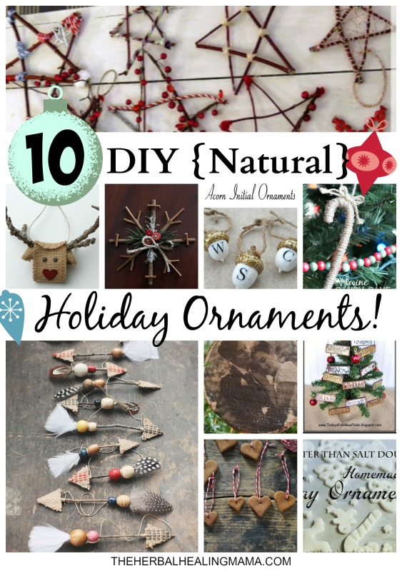 10 DIY {Natural} Holiday Ornaments!