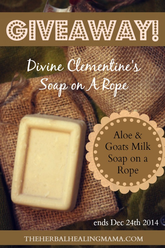 ENTER TO WIN - An All Natural Bar of Divine Clementine's Aloe Goat's Milk Soap on a Rope!