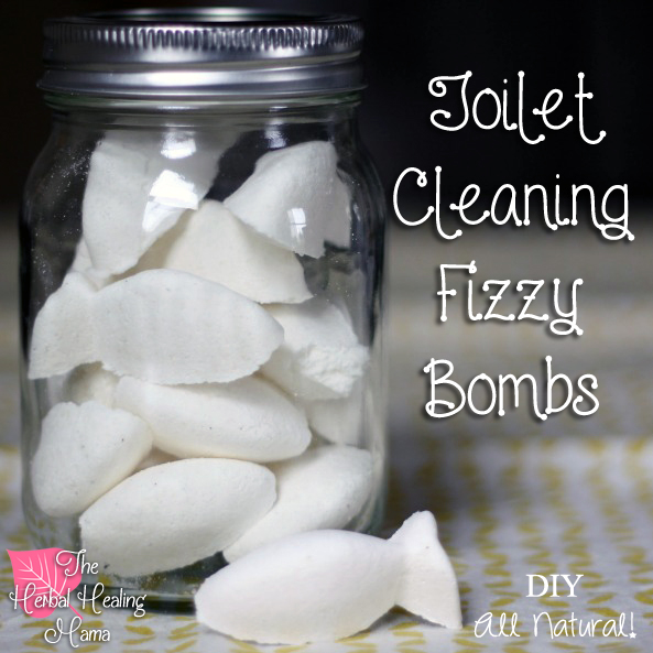 Toilet Cleaning Fizzy Bombs - DIY